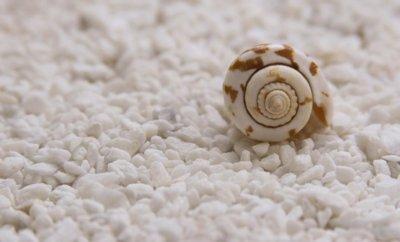 Заговор на соль: поможет привлечь любовь, в деньгах и защитит от врагов
