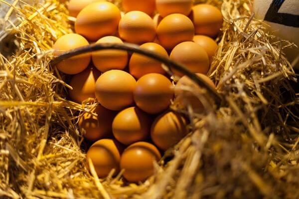 Снятие порчи с помощью яйца и воды