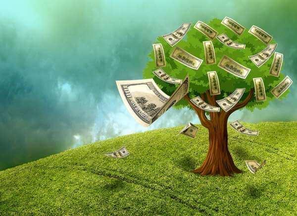 Делаем денежное дерево