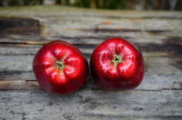 Заклинание на тоску на яблоко