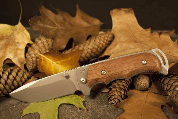 Spoiling the knife: how to remove, clean, bring what it is